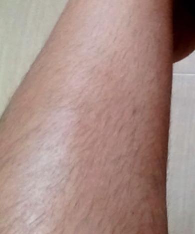 Avant jambe